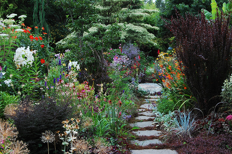 Garden Visitors Are Welcome Throughout The Year, But Need To Call Ahead To  Make Sure We Are Home. The Nursery, But Not The Garden, Is Closed From The  Last ...