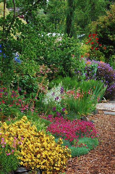 A Virtual Garden Tour at Northwest Garden Nursery | Marietta and ...